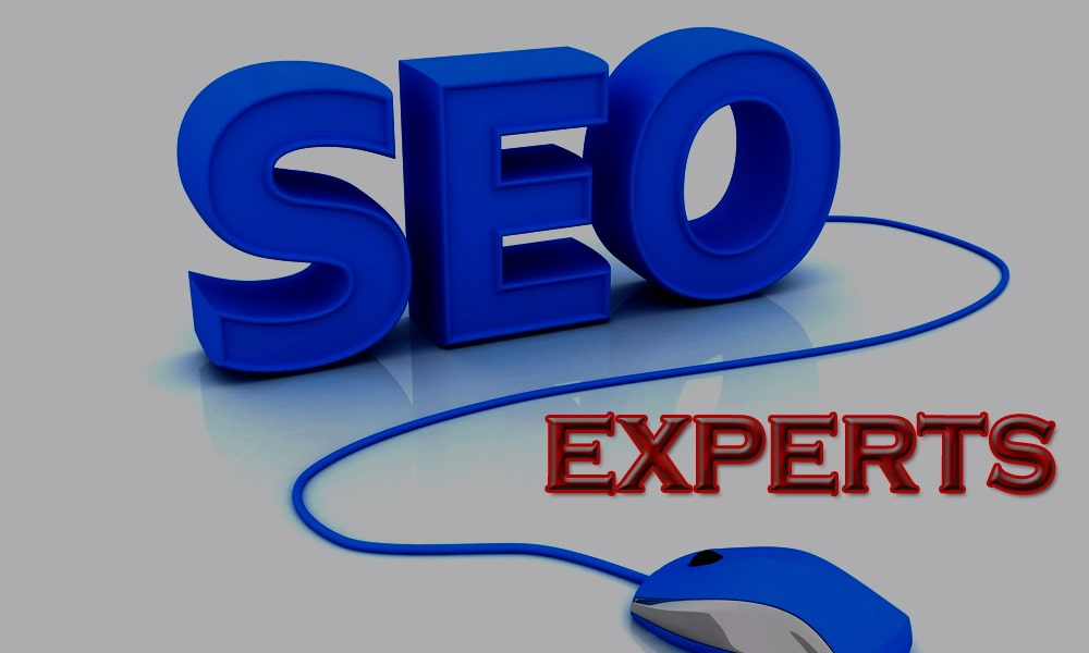 seo-experts-technogleam